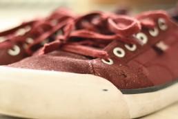 DC Evan Smith skate shoes